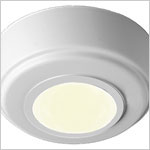 12 Volt Light - Knot, Surface mount ceiling light,  10 watt or LED options
